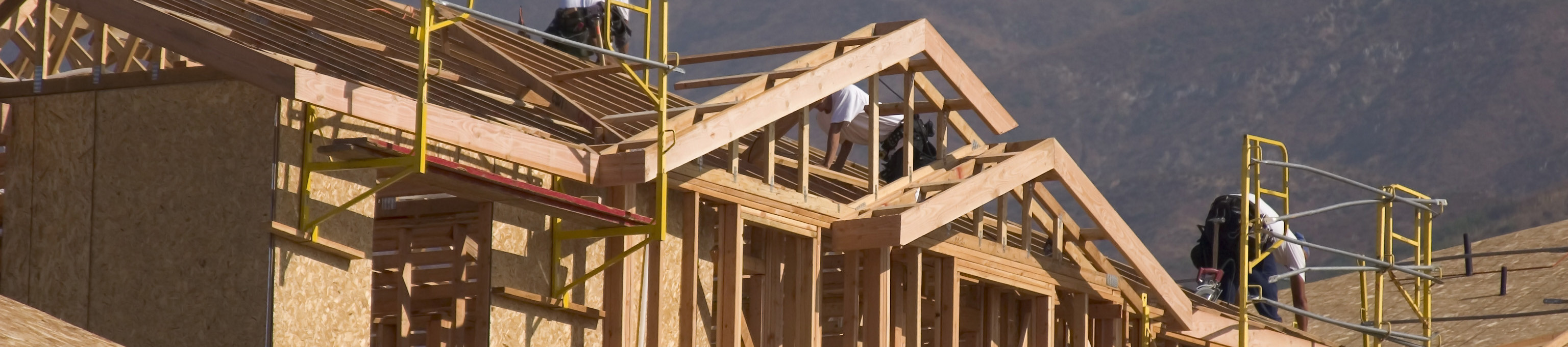 Technical Expert Witnesses including construction experts
